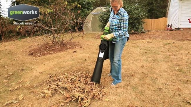 Best Leaf Vacuum (Battery Operated): Greenworks