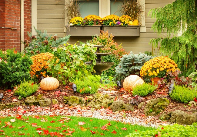 Best Leaf Vacuum for Yards and Gardens