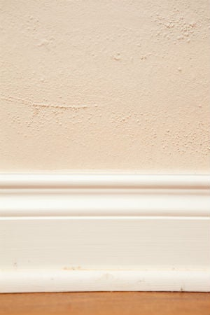 5 Causes for Bubbling Paint—and How to Fix It