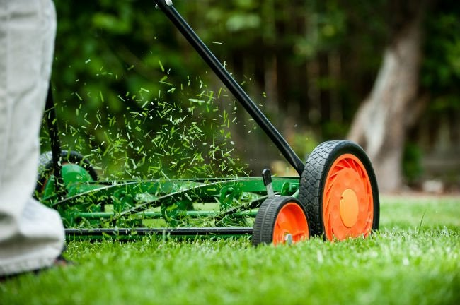 A Er S Guide To Choosing The Best Reel Mower