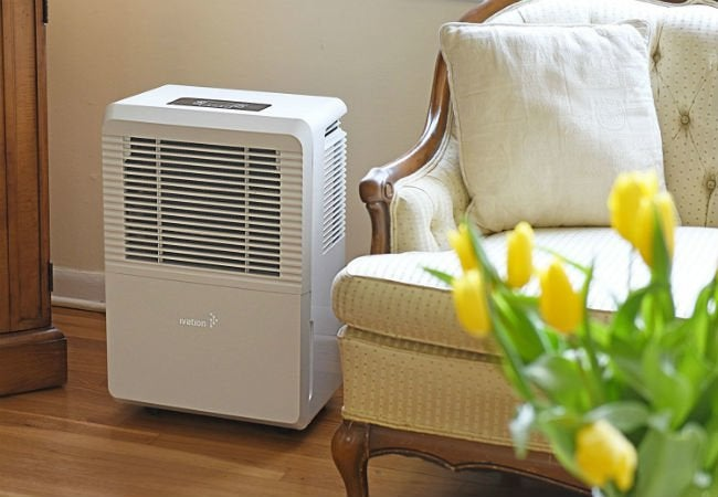 Best Dehumidifiers for Basements - Ivation