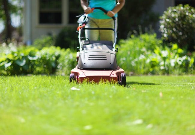 3 Picks for the Best Electric Lawn Mower