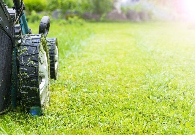 Why Choose Electric Over Gas + 3 Picks for the Best Electric Lawn Mower