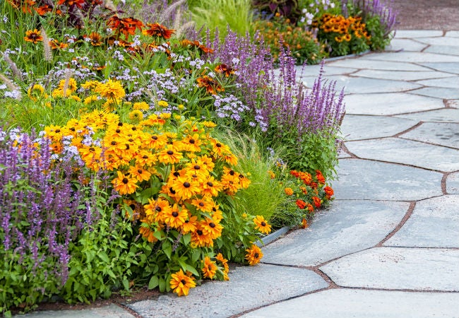 10 Ways to Use Epsom Salt in the Garden