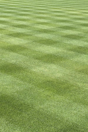 Lawn Striping Tips to Know Before You Start