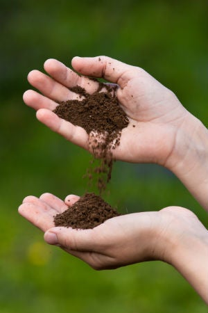 Loamy Soil 101: How to Make and Garden with It | Bob Vila