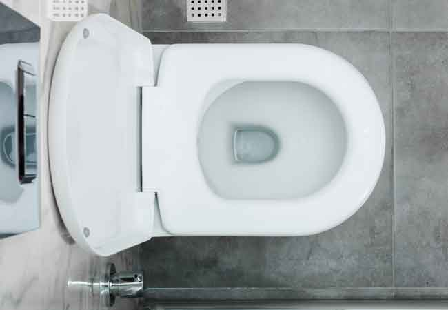Marvelous How To Tighten A Toilet Seat 2 Ways Bob Vila Inzonedesignstudio Interior Chair Design Inzonedesignstudiocom