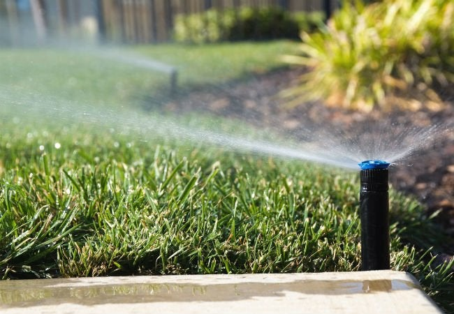 Solving the Biggest Yard Care Challenges