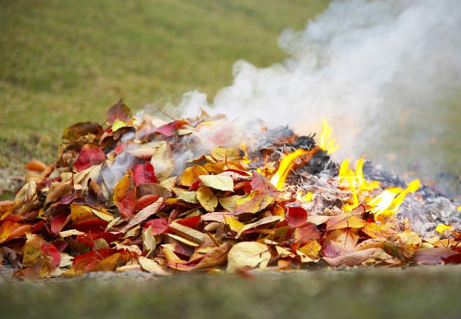 Burning Leaves 6 Things To Know Before You Start Bob Vila