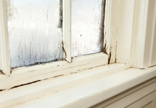 Wood Rot 101: How to Prevent and Repair Its Damage | Bob Vila
