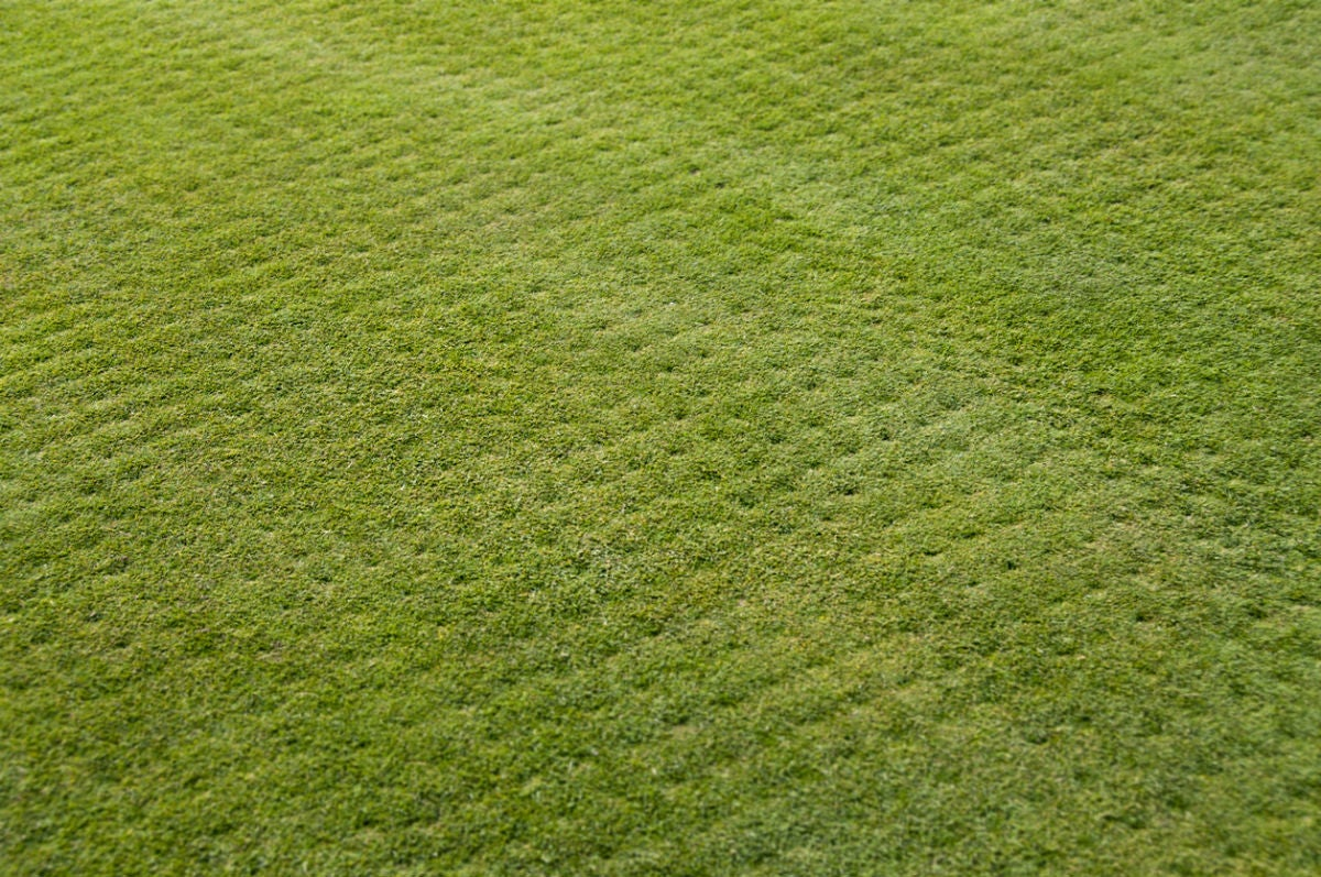 When To Aerate The Lawn Solved Bob Vila