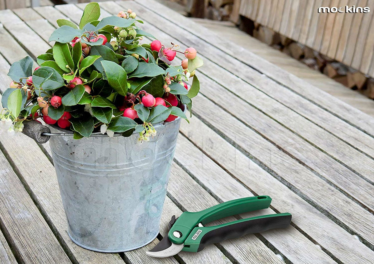Best Pruning Shears, According to Gardeners: Mockins