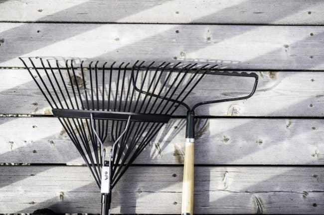 The Best Leaf Rake for Fall Yard Work