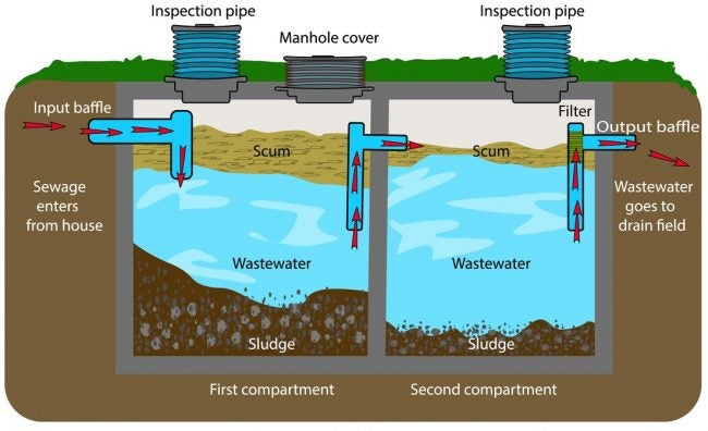 How Does a Septic System Work? This Diagram Explains