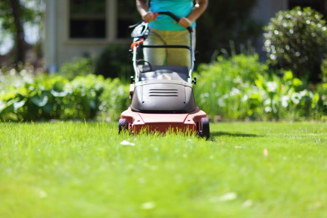 Gas vs Electric Mowers: The 7 Biggest Differences