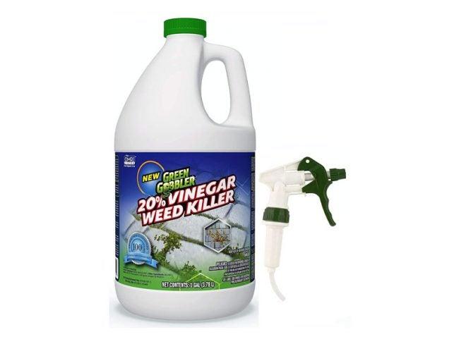 The Best Weed Killer Option: Green Gobbler Vinegar Weed & Grass Killer
