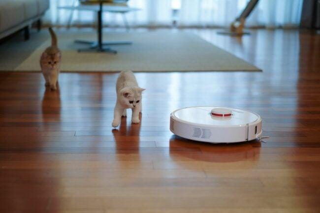 The Best Robot Vacuums Option