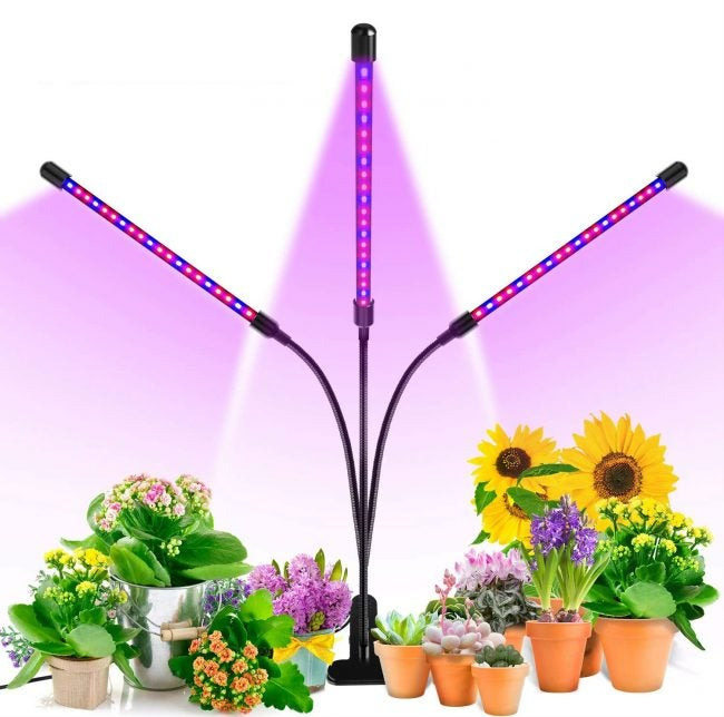 The Best Grow Light Option: Ankace Grow Light