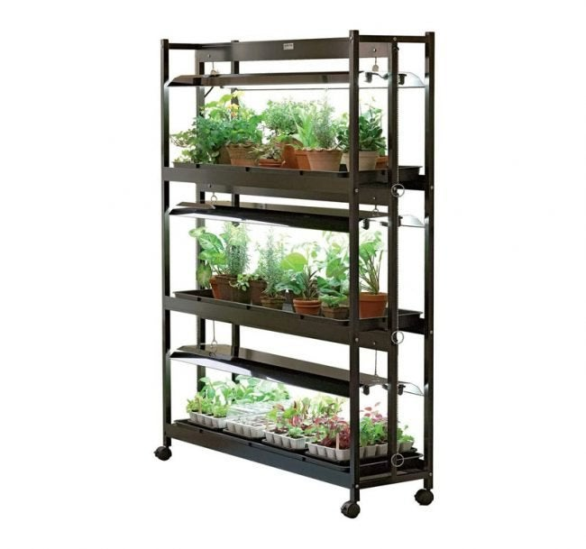 The Best Grow Light Option: Gardener's Supply Company 3-Tier Stand