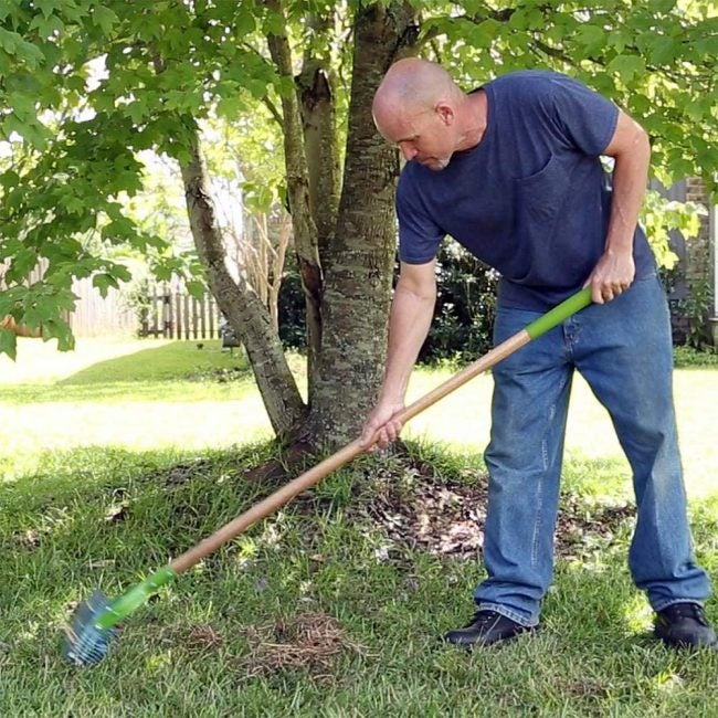 How to Dethatch a Lawn with a Thatch Rake