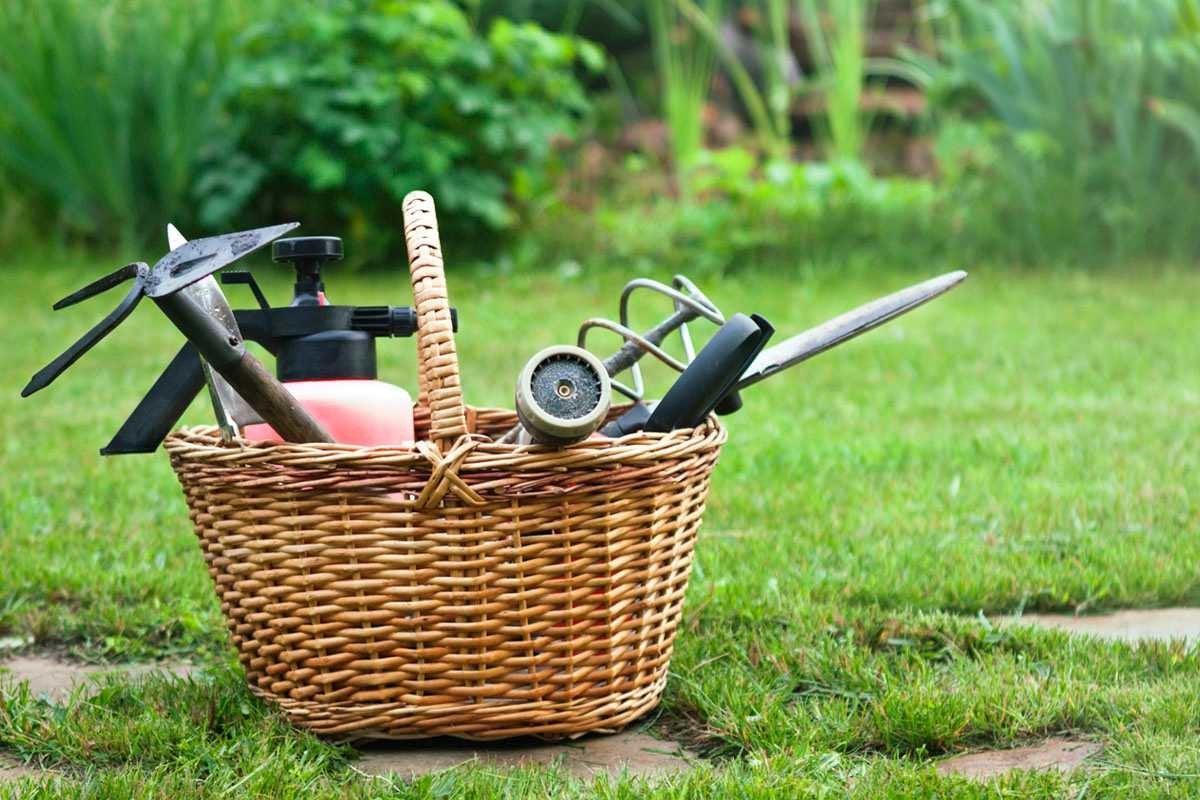 The Best Weeding Tool Options for Gardeners - Bob Vila