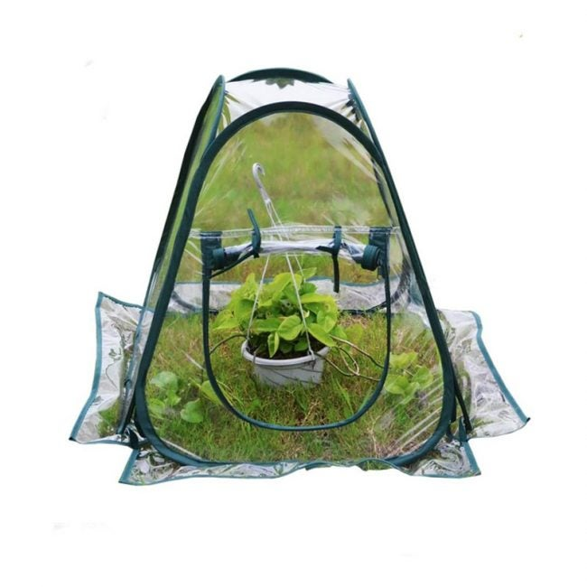 The Best Compact Greenhouse Option: AHOME Mini Pop-Up Greenhouse