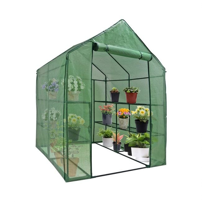 The Best Compact Greenhouse Option: Nova Mini Walk-In Greenhouse