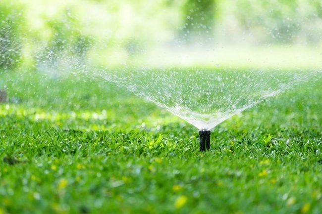 How to Replace a Sprinkler Head: Testing the Sprinkler