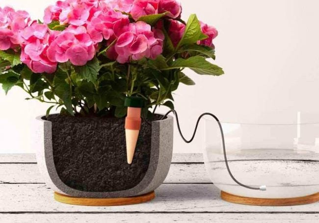The Best Automatic Plant Waterer Options