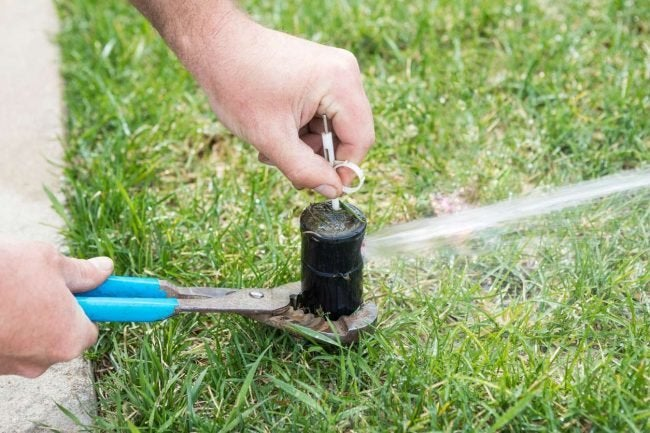 How to Replace a Sprinkler Head: Unscrew the Old Sprinkler Head