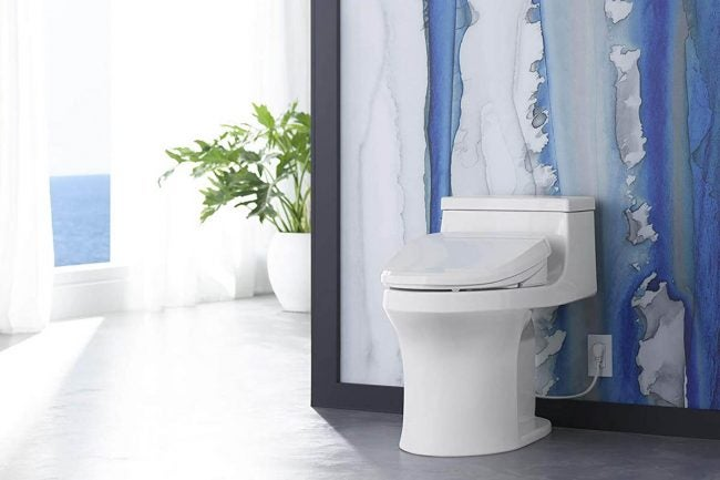 The Best Bidet Options