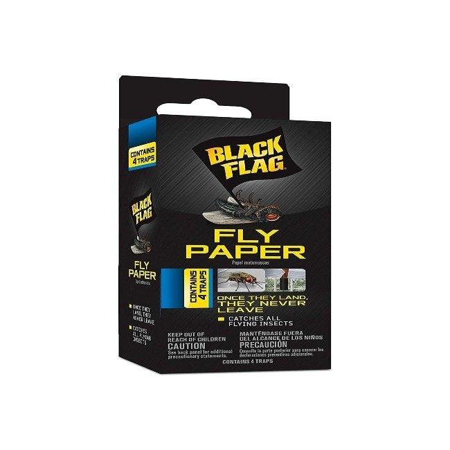 Best Fly Trap Black Frag