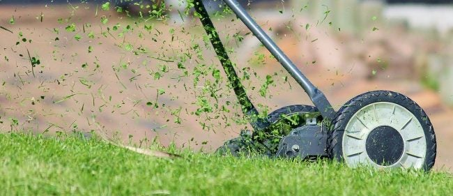 The Best Mulching Blades Options