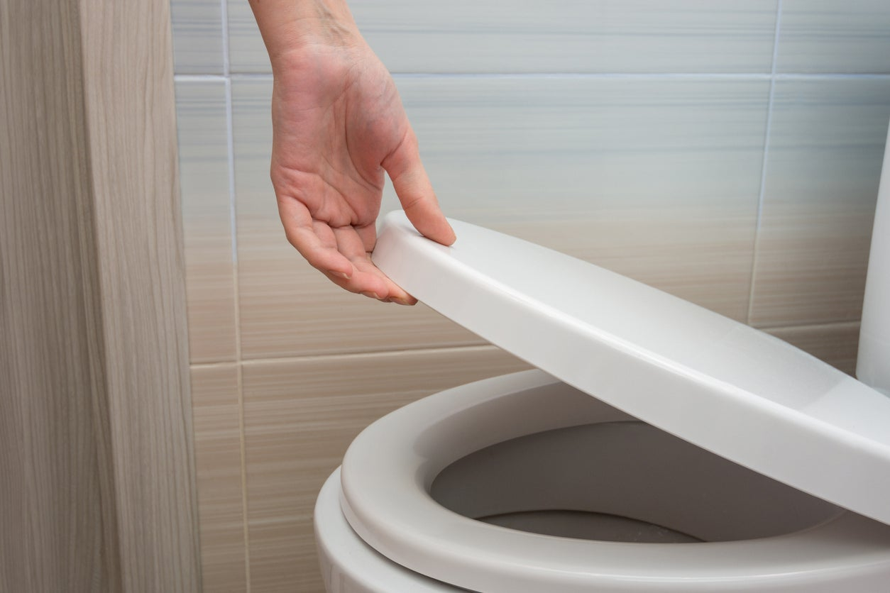 The Best Toilet Seats For Bathroom Upgrades Bob Vila
