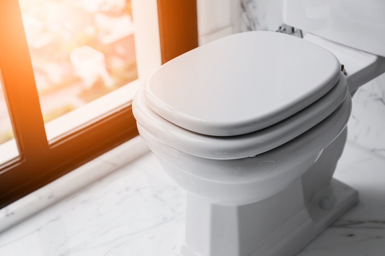 Picture of: The Best Toilet Seats For Bathroom Upgrades Bob Vila
