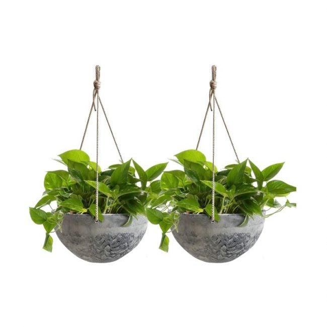 The Best Hanging Planter Option: La Jolie Muse Hanging Planters
