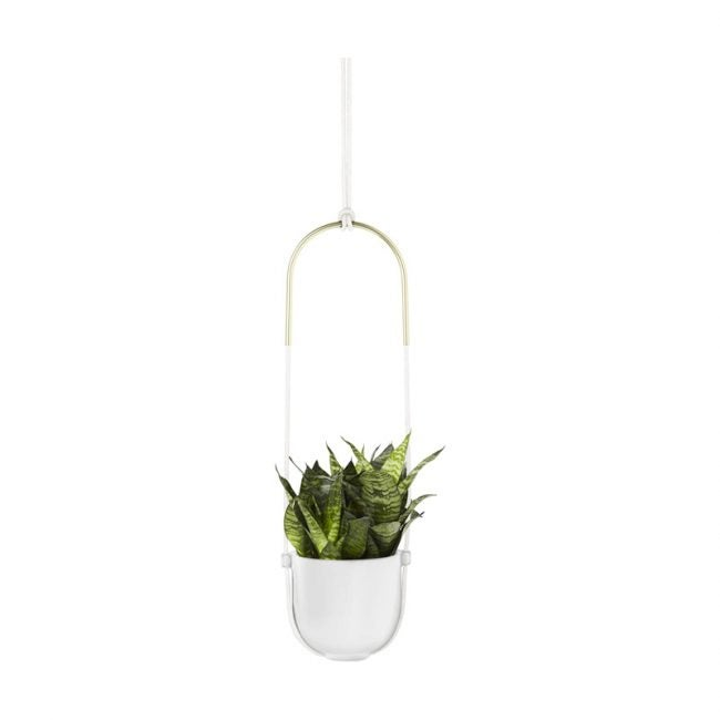 The Best Hanging Planter Option: Umbra Bolo Hanging Planter