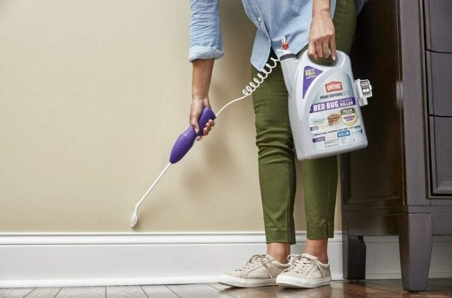 The Best Bed Bug Spray Option