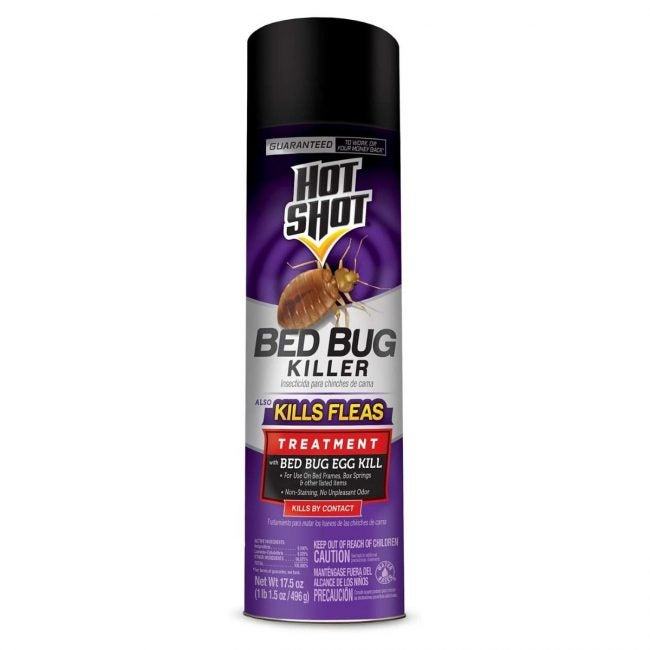 The Best Bed Bug Spray Option: Hot Shot Bed Bug Killer
