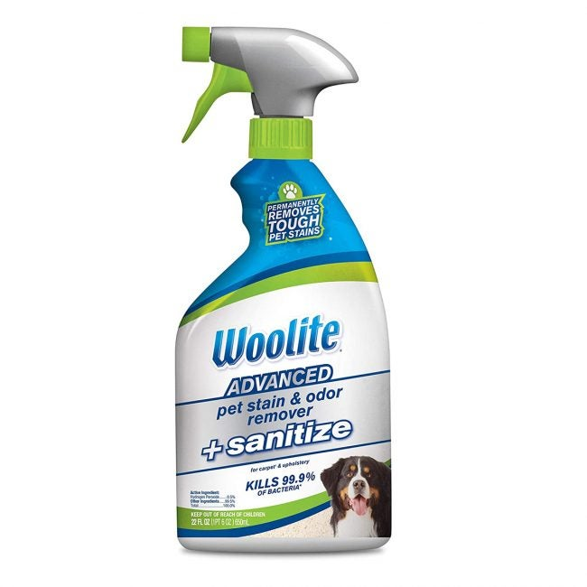 Best Carpet Deodorizers Options: Woolite Advanced Pet Stain