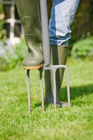 How To Overseed a Lawn: Aerating Before Overseeding