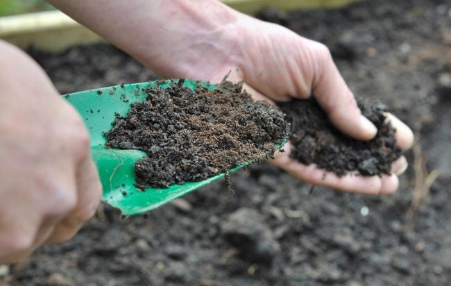 How To Overseed a Lawn: Amend the Soil