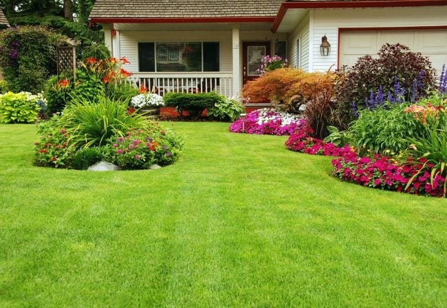 How To: Overseed a Lawn For a Lush, Green Yard