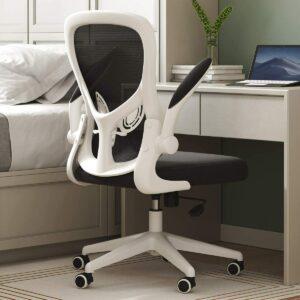 Best Ergonomic Chair Hbada
