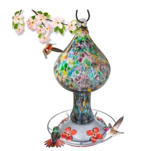 Best Hummingbird Feeder Options: Hummingbird Feeder