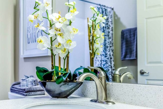 Chrome vs. Brushed Nickel: Brushed Nickel Complements Warmer Colors