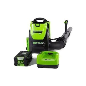 Best Battery Powered Leaf Blower Greenworks80V