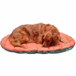 The Best Dog Beds Option: Furhaven Pet - Packable Travel Bed