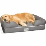 The Best Dog Beds Option: PetFusion Ultimate Dog Bed