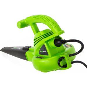 Best Electric Leaf Blower Greenworks